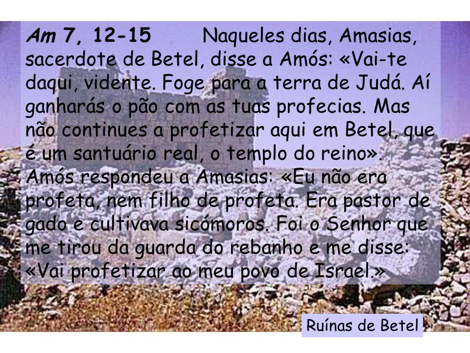 Am 7, 12-15 Naqueles dias, Amasias, sacerdote de Betel, disse a Amós: «Vai-te daqui, vidente. Foge para a terra de Judá. Aí ganharás o pão com as tuas profecias. Mas não continues a profetizar aqui em Betel, que é um santuário real, o templo do reino». Amós respondeu a Amasias: «Eu não era profeta, nem filho de profeta. Era pastor de gado e cultivava sicómoros. Foi o Senhor que me tirou da guarda do rebanho e me disse: «Vai profetizar ao meu povo de Israel.»