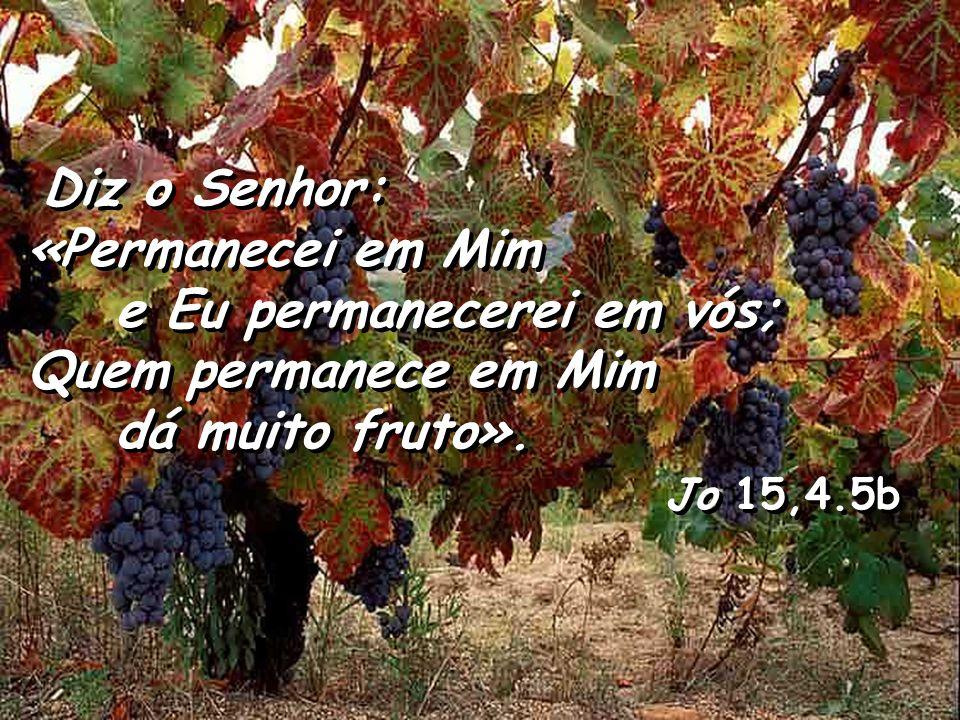 Diz o Senhor: «Permanecei em Mim. e Eu permanecerei em vós; Quem permanece em Mim. dá muito fruto».