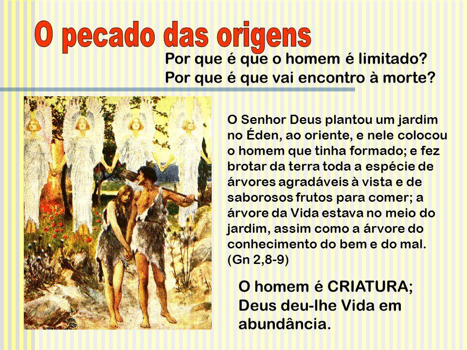 O pecado das origens Por que é que o homem é limitado Por que é que vai encontro à morte