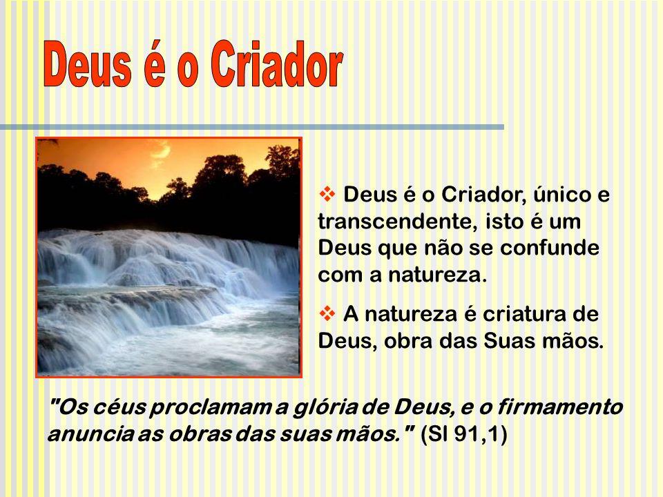 Deus é o Criador Deus é o Criador, único e transcendente, isto é um Deus que não se confunde com a natureza.