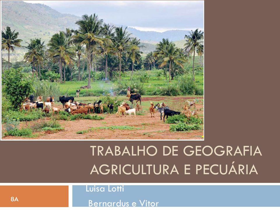 Trabalho de geografia Agricultura e pecuária