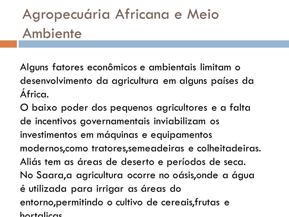 Agropecuária Africana e Meio Ambiente