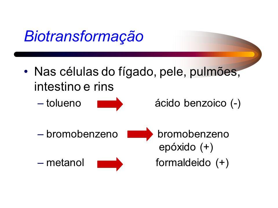 Biotransformação Nas células do fígado, pele, pulmões, intestino e rins. tolueno ácido benzoico (-)