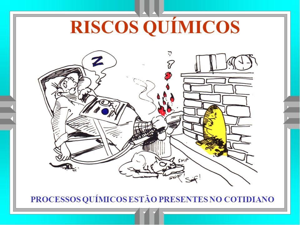 RISCOS QUÍMICOS PROCESSOS QUÍMICOS ESTÃO PRESENTES NO COTIDIANO