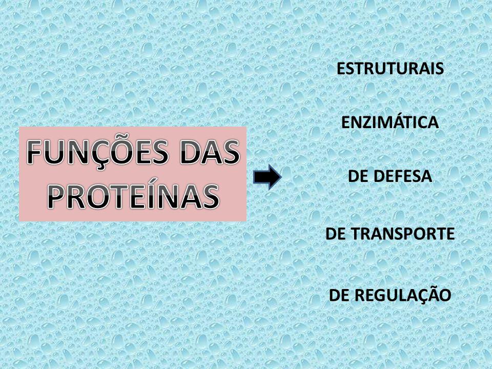FUNÇÕES DAS PROTEÍNAS ESTRUTURAIS ENZIMÁTICA DE DEFESA DE TRANSPORTE