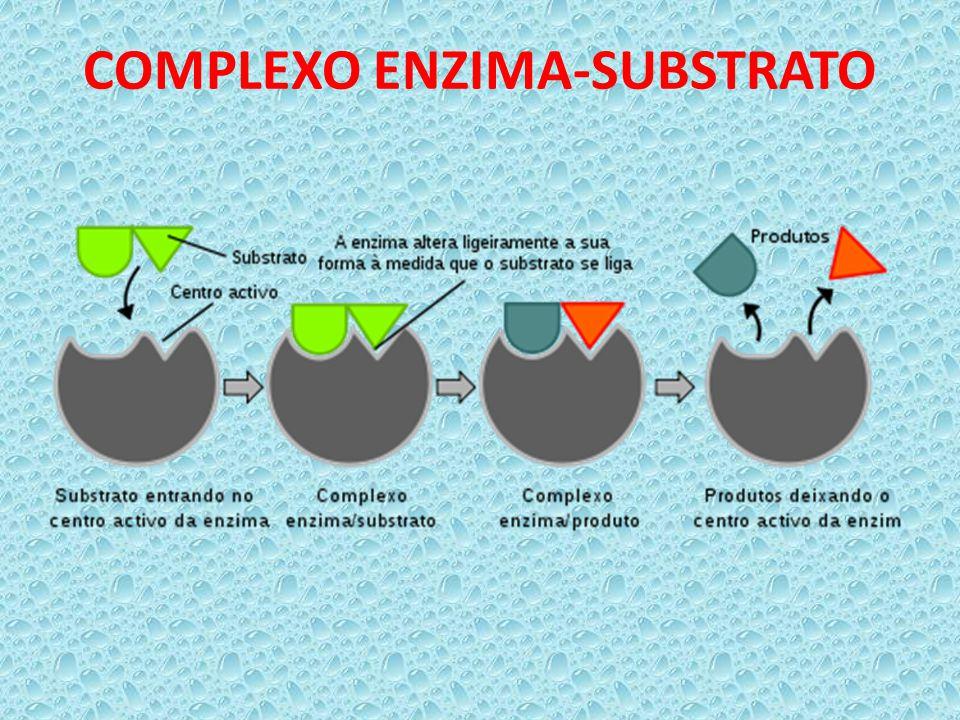 COMPLEXO ENZIMA-SUBSTRATO