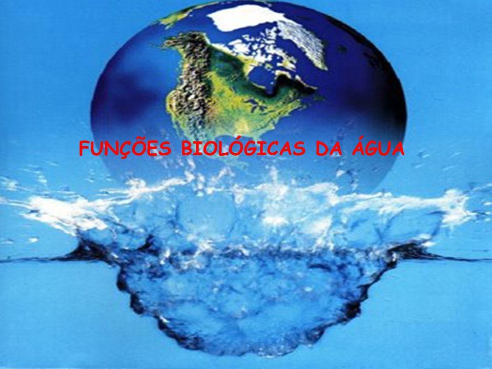 FUNÇÕES BIOLÓGICAS DA ÁGUA