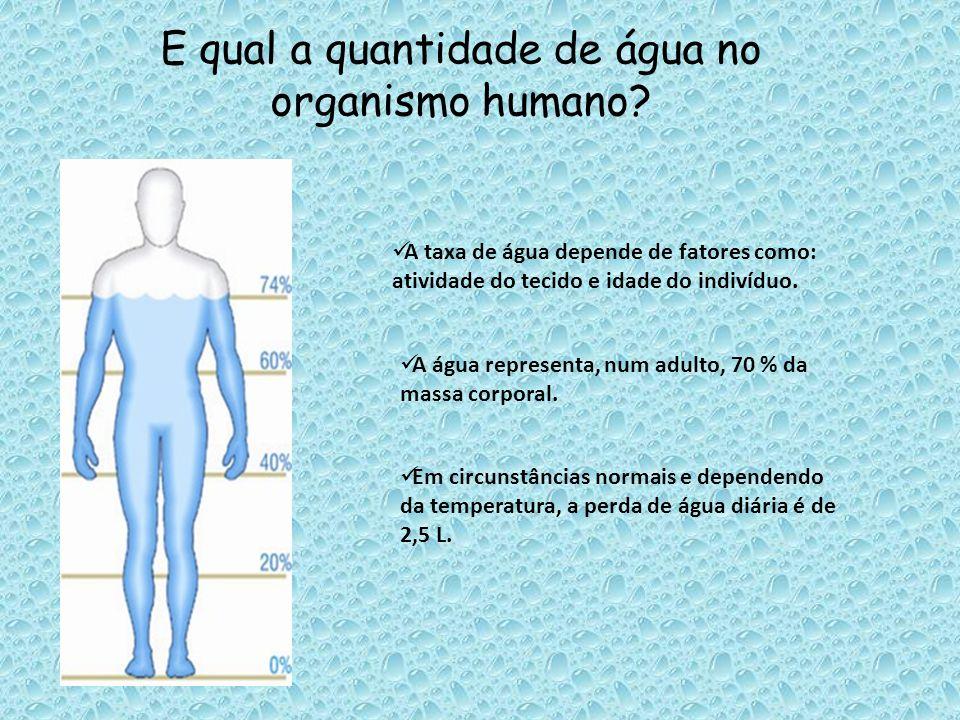 E qual a quantidade de água no organismo humano