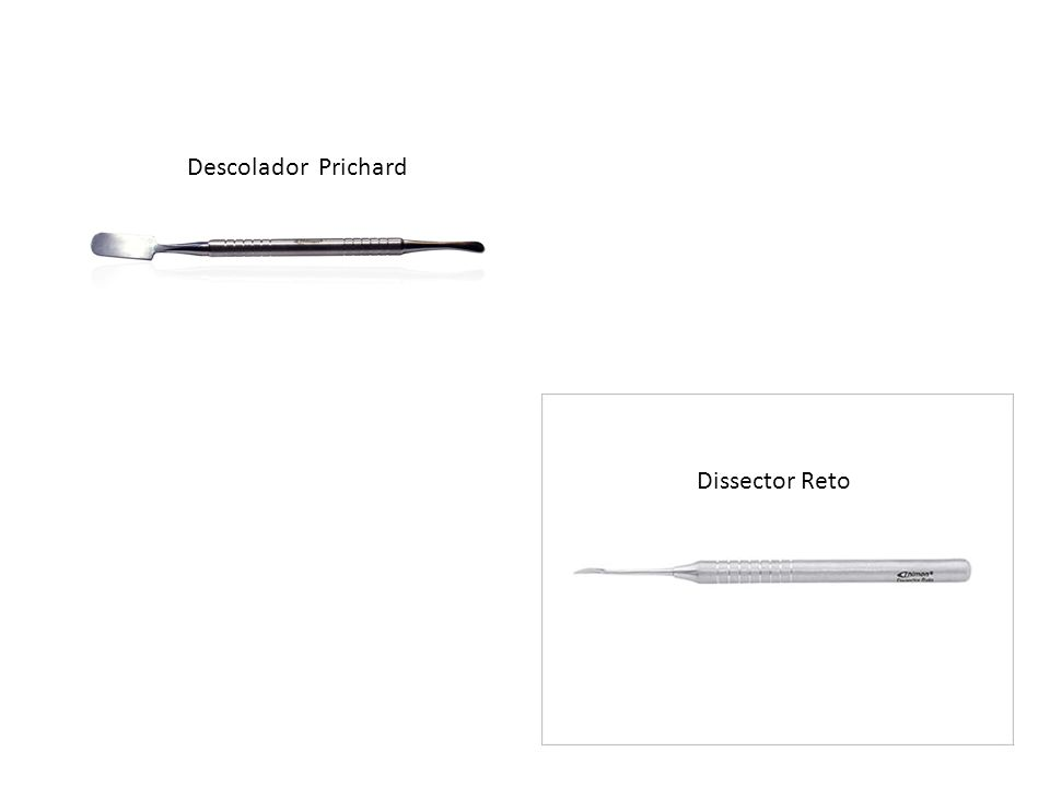 Descolador Prichard Dissector Reto