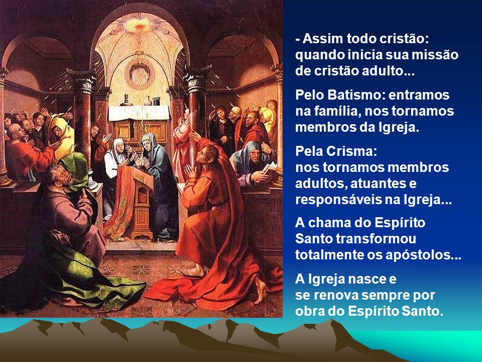- Assim todo cristão: quando inicia sua missão de cristão adulto...