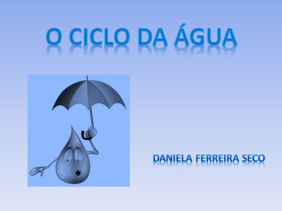 O Ciclo da Água Daniela Ferreira Seco
