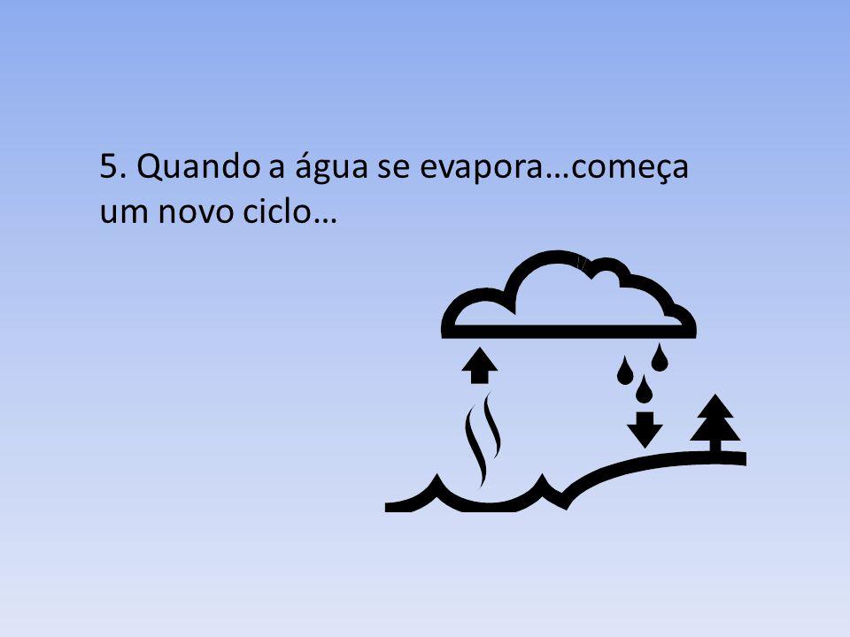 5. Quando a água se evapora…começa um novo ciclo…
