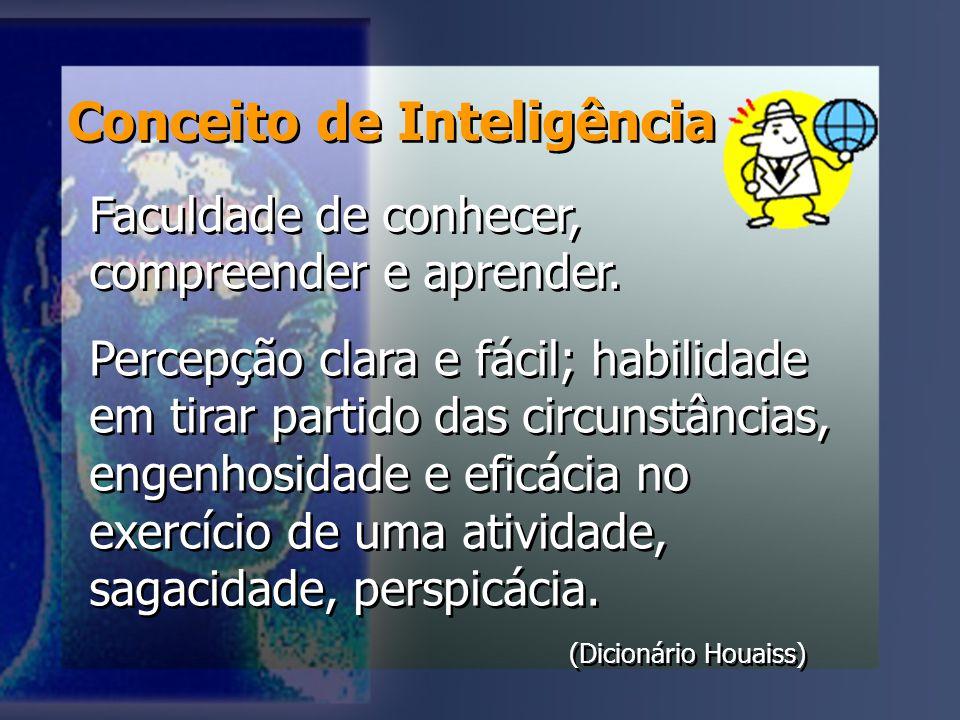 Conceito de Inteligência