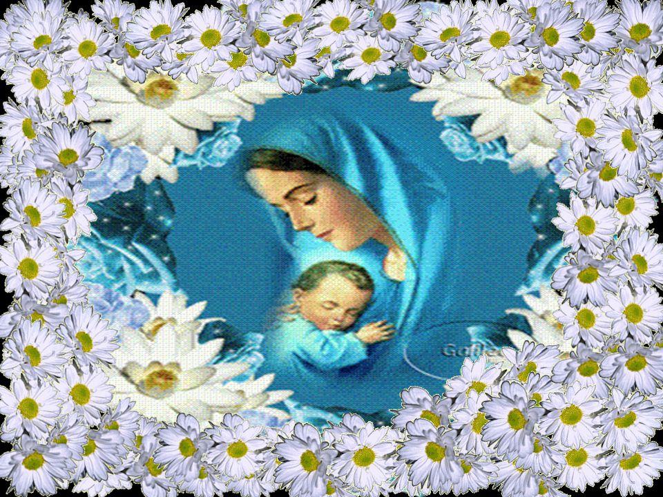 Maria levava Jesus pelos caminhos da terra.