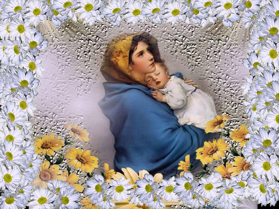 Nesta festa, com Maria, proclamamos a obra grandiosa de Deus, que chama a humanidade a se juntar a ele pelo caminho da ressurreição.