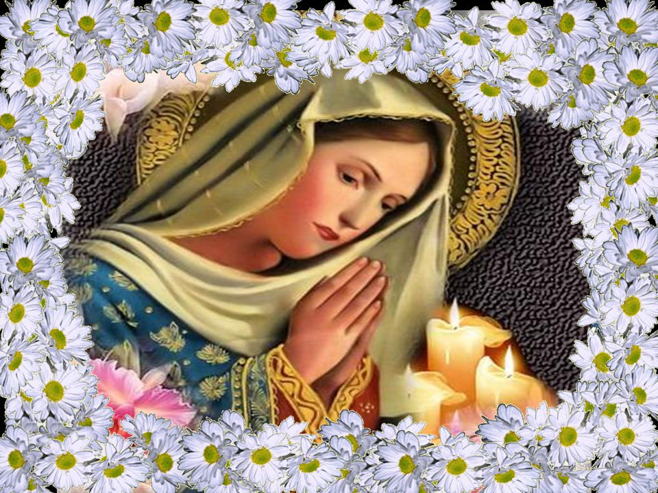 Tema da Solenidade da Assunção da Virgem Santa Maria