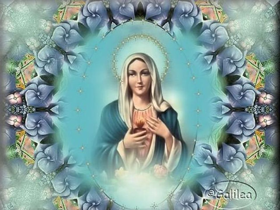 O cântico de Maria descreve o programa que Deus tinha começado a realizar desde o começo, que ele