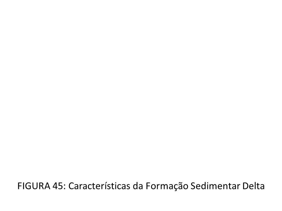 FIGURA 45: Características da Formação Sedimentar Delta