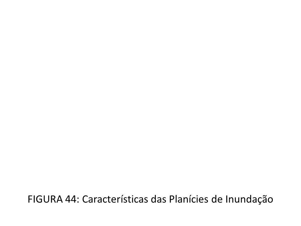 FIGURA 44: Características das Planícies de Inundação