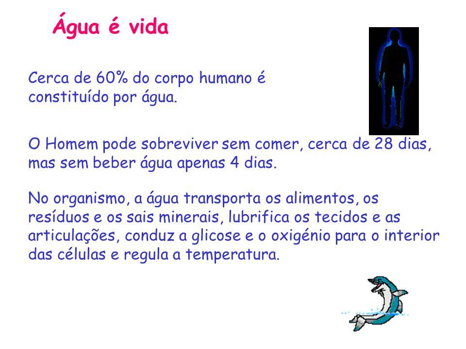 Cerca de 60% do corpo humano é constituído por água.