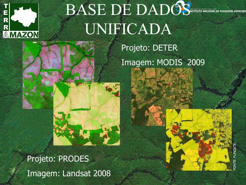 BASE DE DADOS UNIFICADA