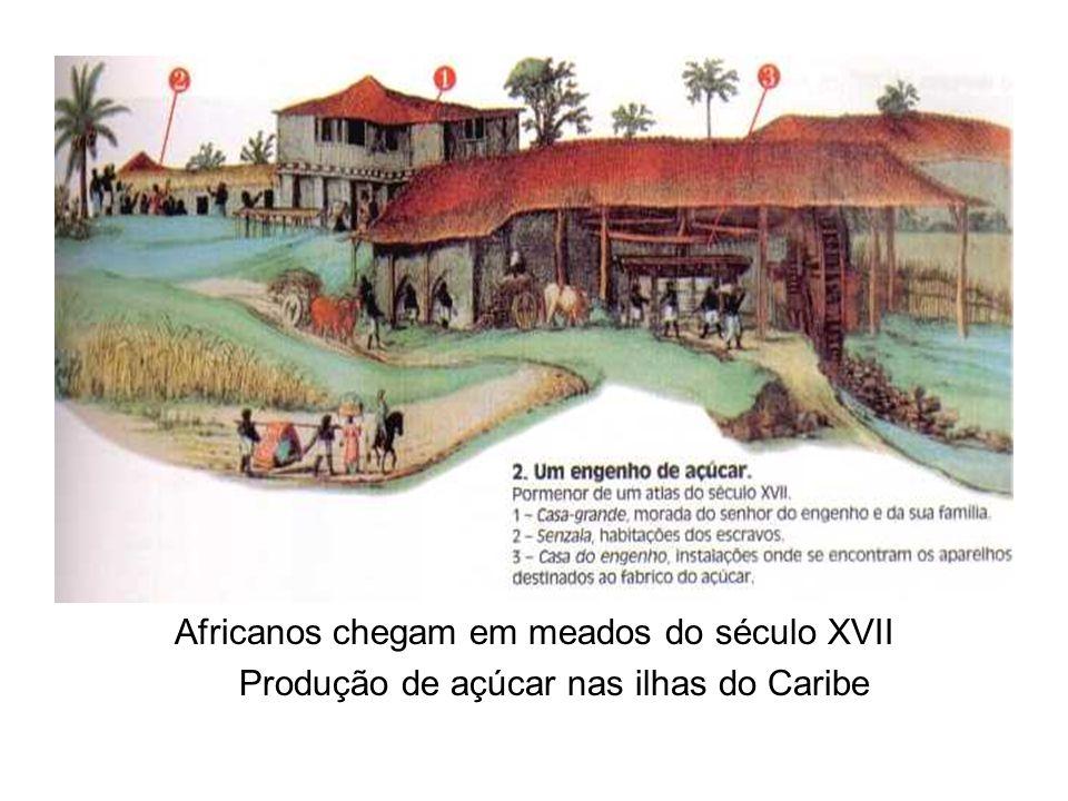 Africanos chegam em meados do século XVII