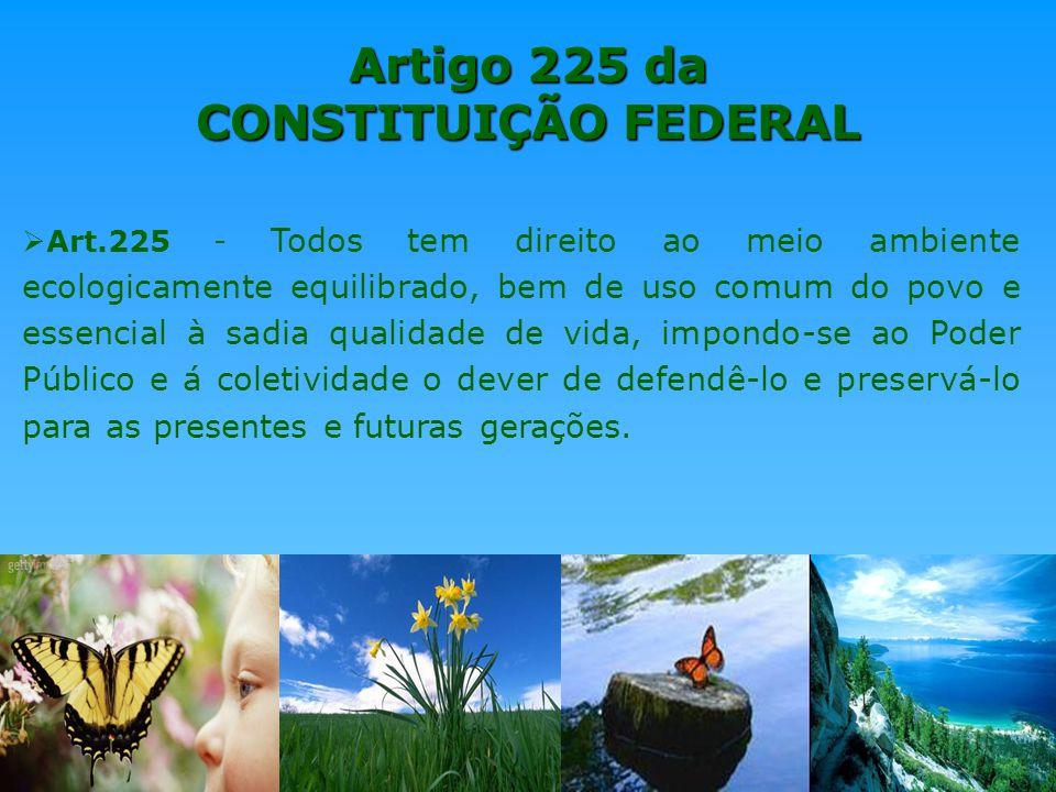Artigo 225 da constituicao federal