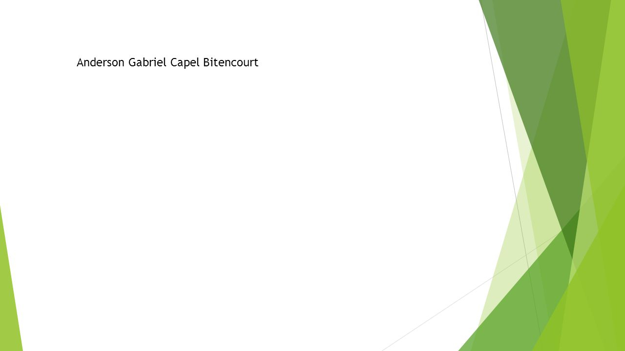 Anderson Gabriel Capel Bitencourt