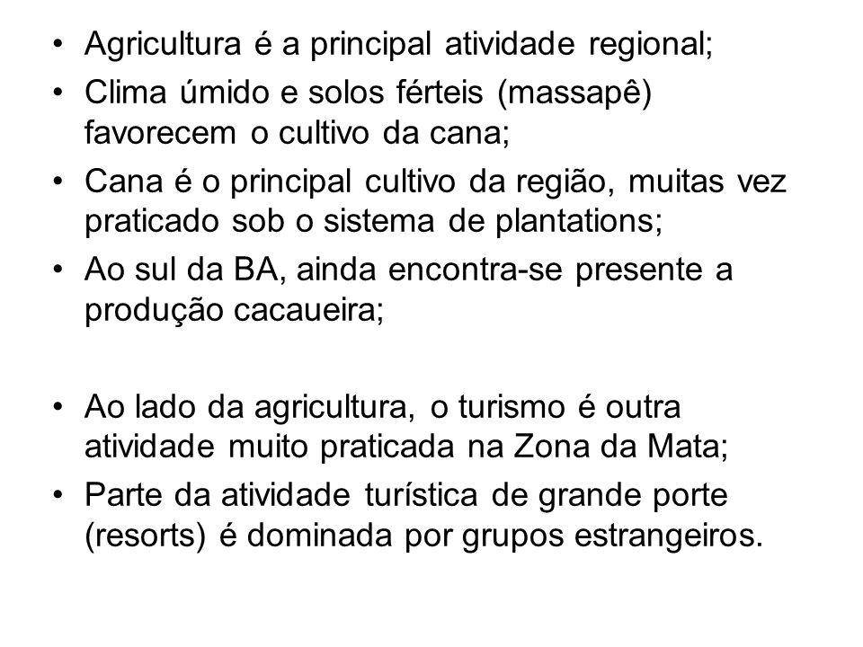 Agricultura é a principal atividade regional;