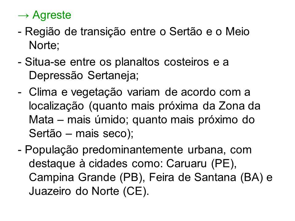 → Agreste - Região de transição entre o Sertão e o Meio Norte; - Situa-se entre os planaltos costeiros e a Depressão Sertaneja;