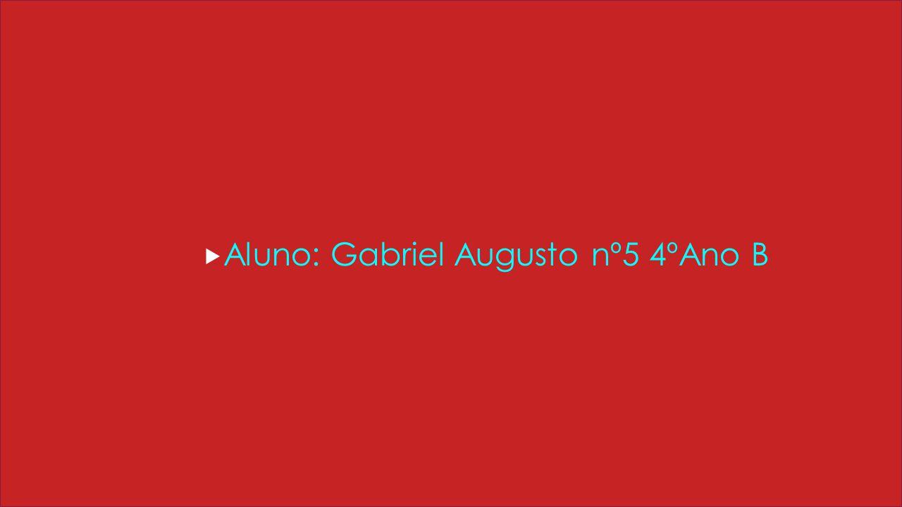 Aluno: Gabriel Augusto nº5 4ºAno B