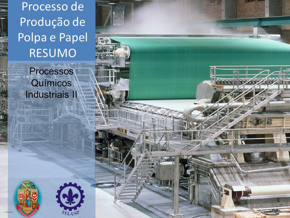 Processo de Produção de Polpa e Papel
