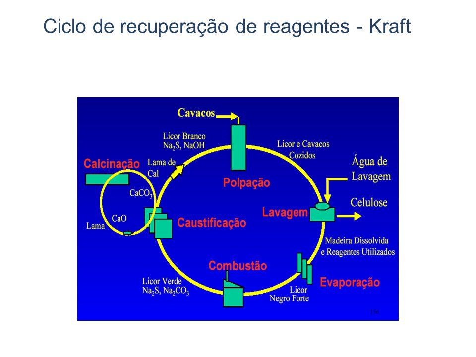 Ciclo de recuperação de reagentes - Kraft