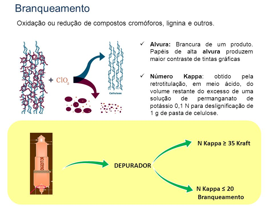 Branqueamento Oxidação ou redução de compostos cromóforos, lignina e outros.