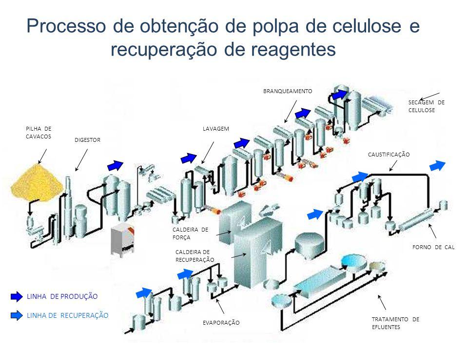 Processo de obtenção de polpa de celulose e recuperação de reagentes