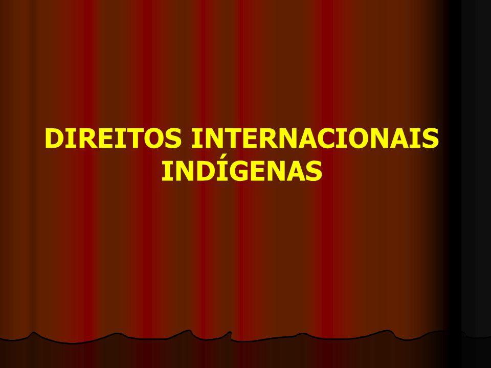 DIREITOS INTERNACIONAIS INDÍGENAS