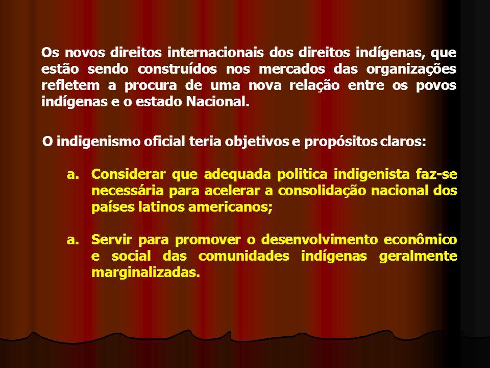 Os novos direitos internacionais dos direitos indígenas, que estão sendo construídos nos mercados das organizações refletem a procura de uma nova relação entre os povos indígenas e o estado Nacional.