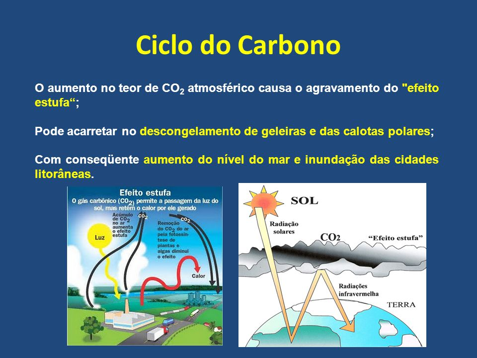 Ciclo do Carbono O aumento no teor de CO2 atmosférico causa o agravamento do efeito estufa ;
