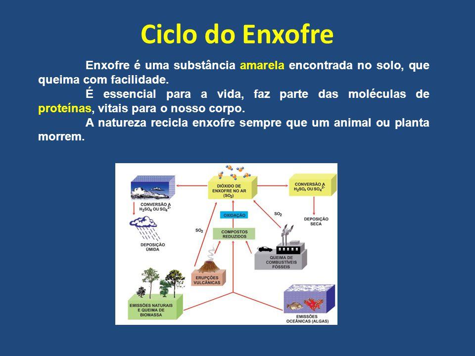 Ciclo do Enxofre Enxofre é uma substância amarela encontrada no solo, que queima com facilidade.