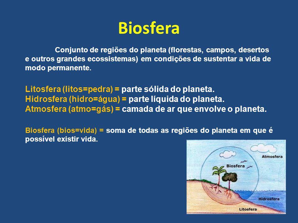 Biosfera Litosfera (litos=pedra) = parte sólida do planeta.