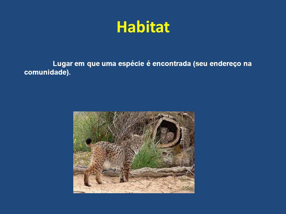 Habitat Lugar em que uma espécie é encontrada (seu endereço na comunidade).