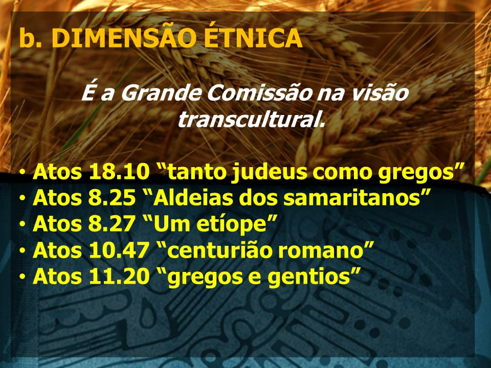 É a Grande Comissão na visão transcultural.