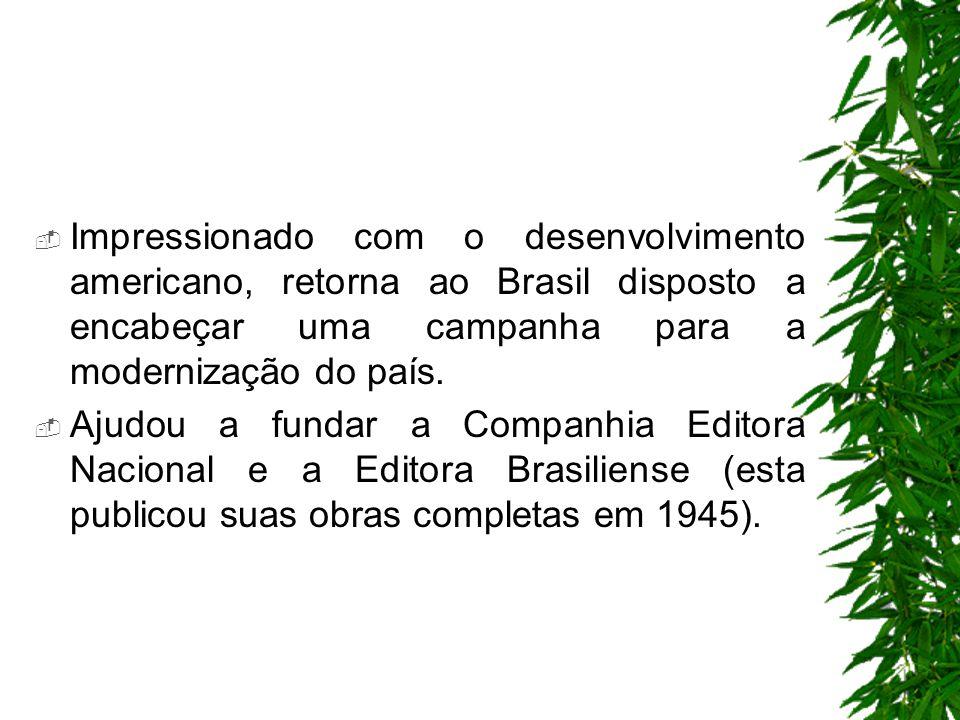 Impressionado com o desenvolvimento americano, retorna ao Brasil disposto a encabeçar uma campanha para a modernização do país.