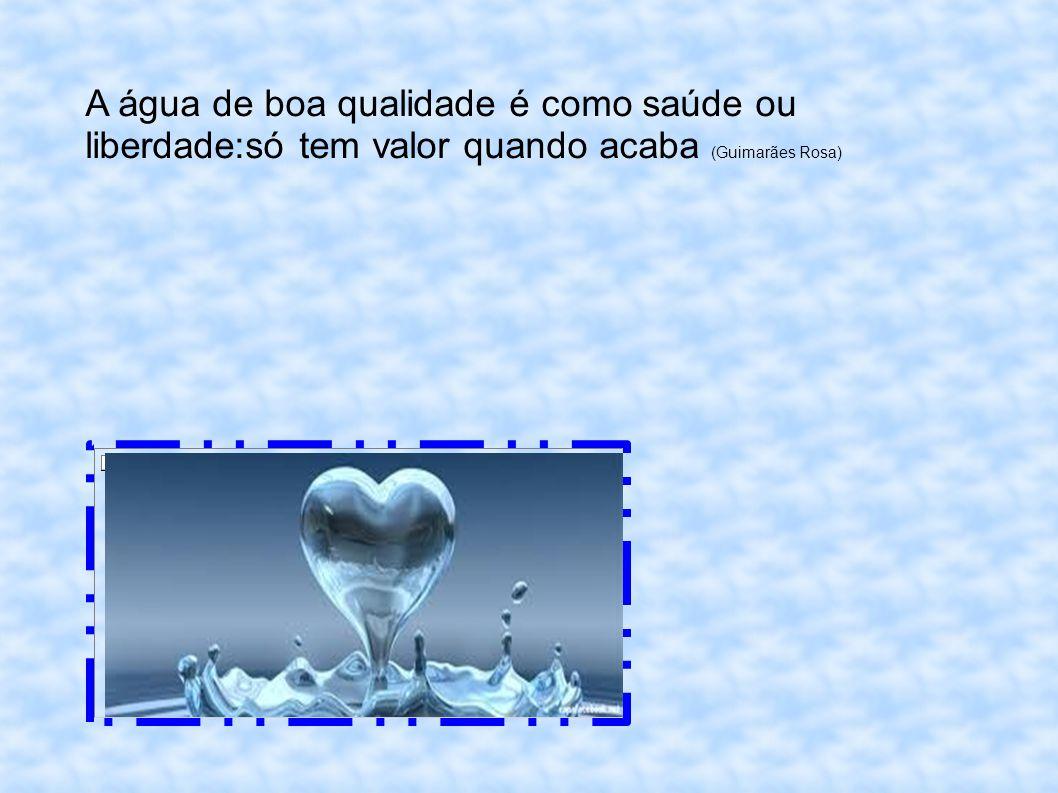 A água de boa qualidade é como saúde ou liberdade:só tem valor quando acaba (Guimarães Rosa)