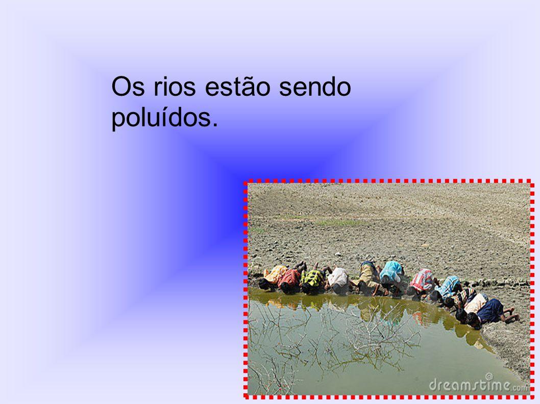 Os rios estão sendo poluídos.