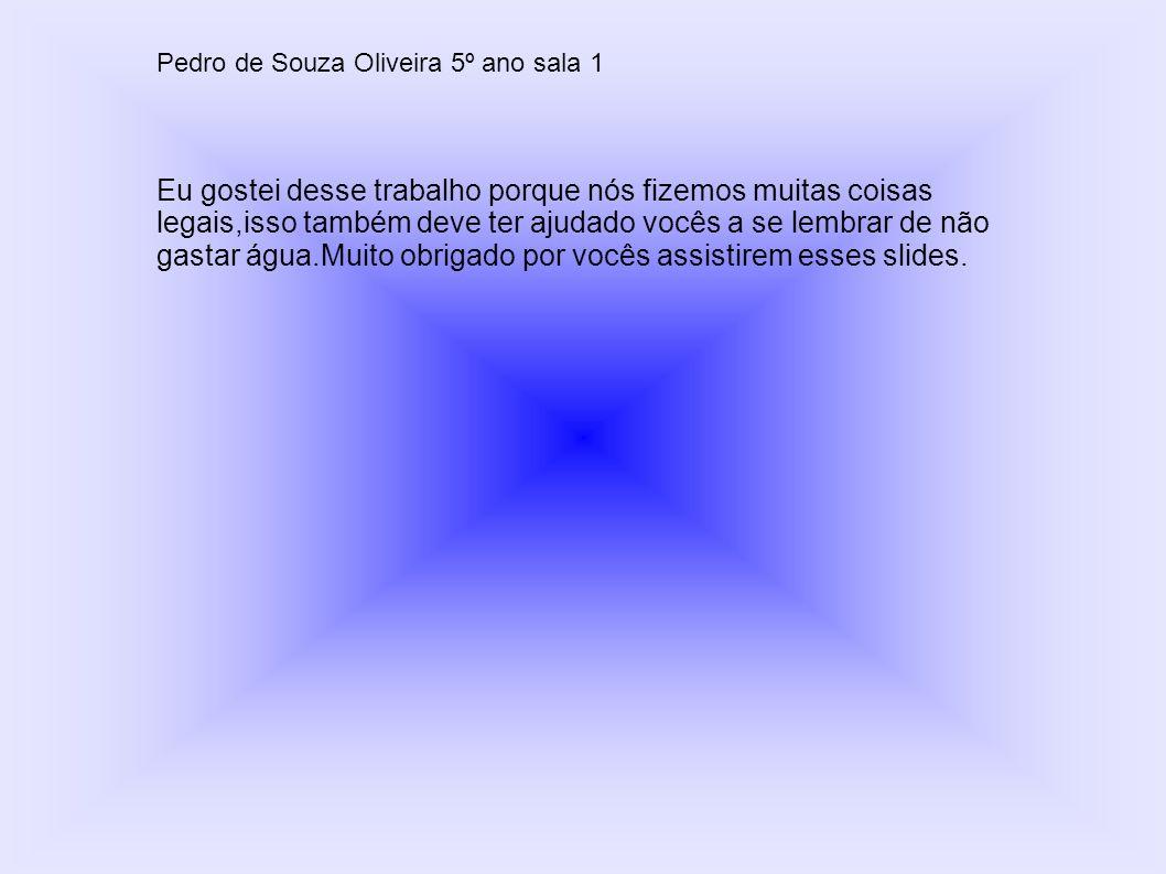 Pedro de Souza Oliveira 5º ano sala 1