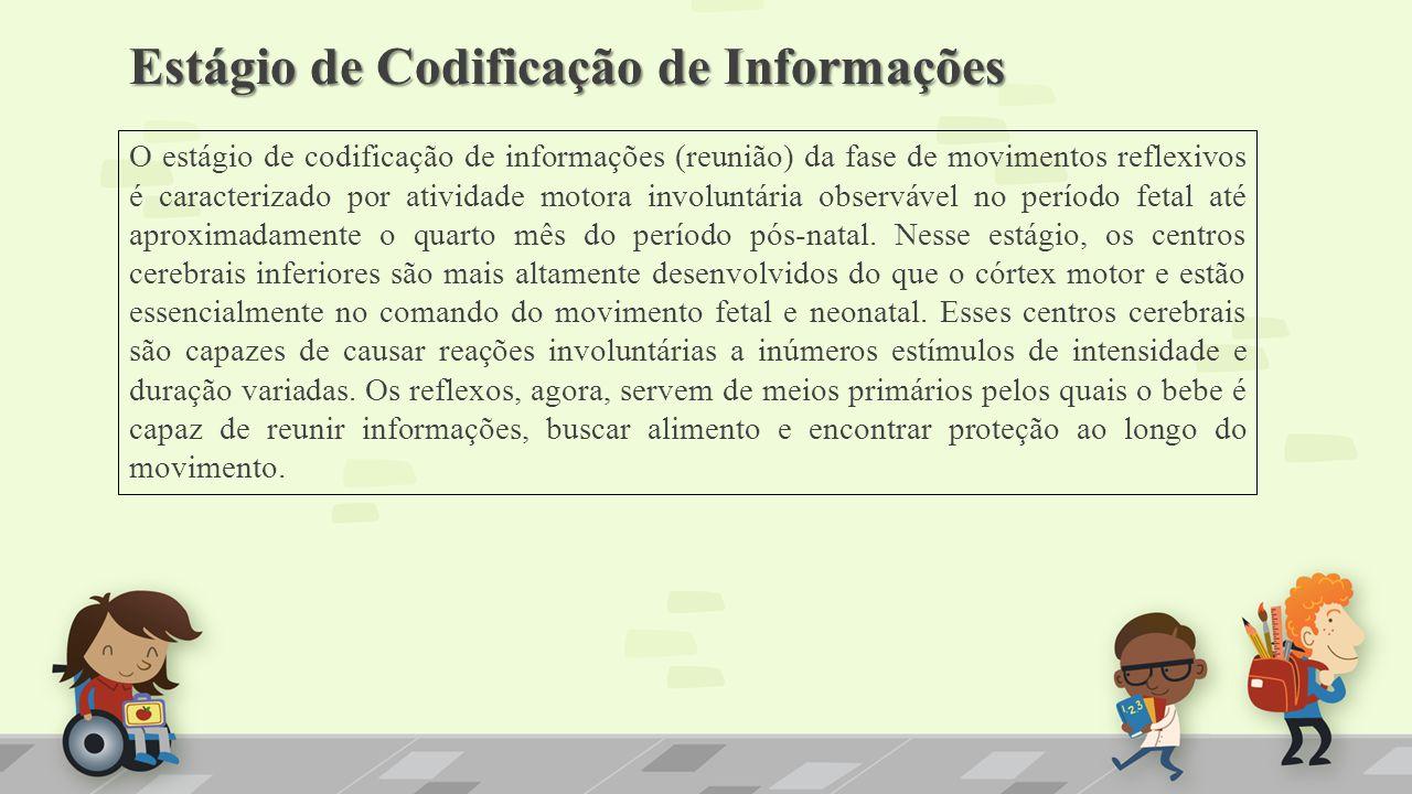 Estágio de Codificação de Informações
