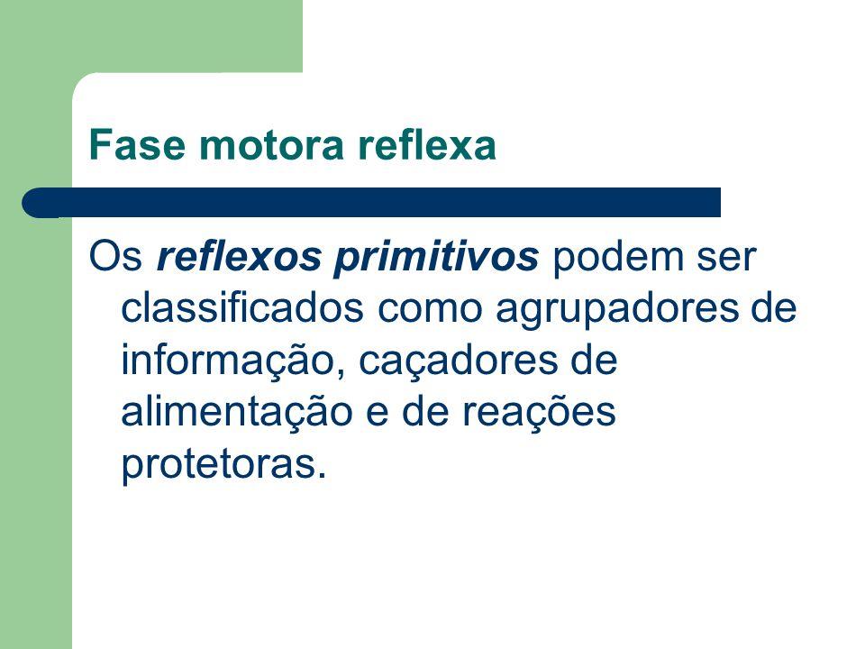 Fase motora reflexa Os reflexos primitivos podem ser classificados como agrupadores de informação, caçadores de alimentação e de reações protetoras.