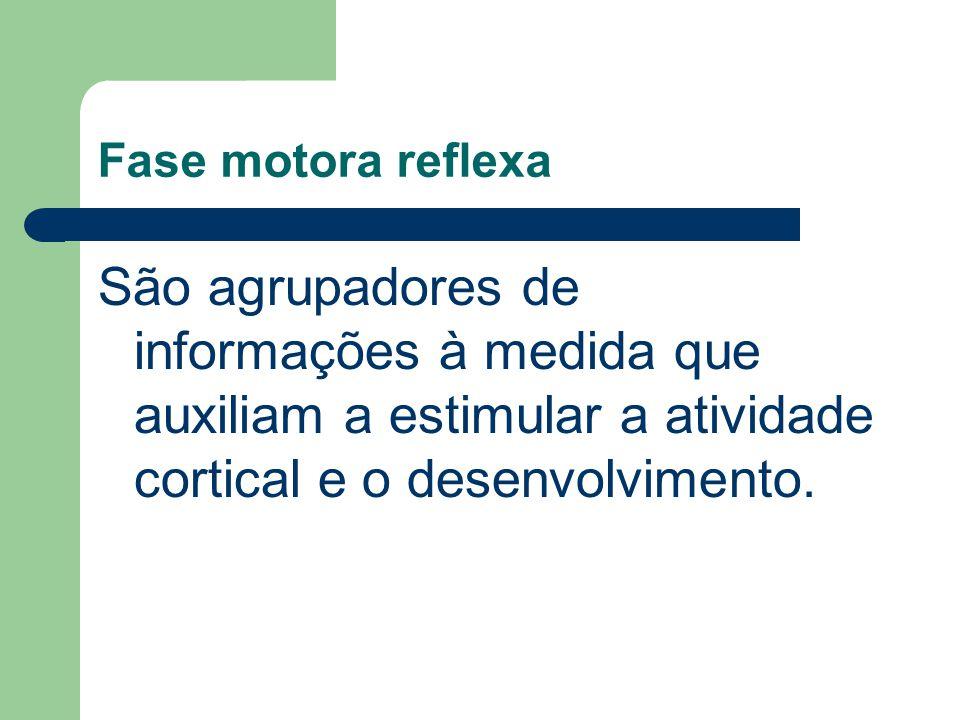 Fase motora reflexa São agrupadores de informações à medida que auxiliam a estimular a atividade cortical e o desenvolvimento.