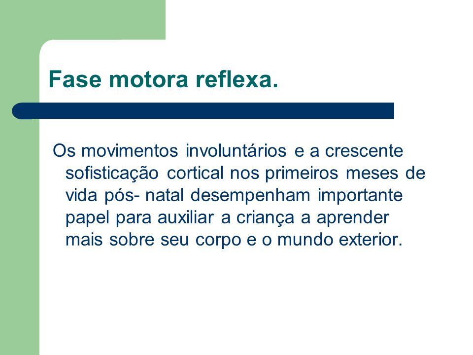 Fase motora reflexa.